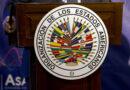 OEA: la montaña de falsas ilusiones no pare ratones, pare musarañas