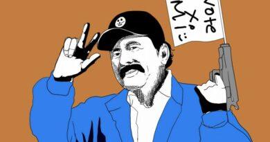Las trampas de las encuestas en las elecciones en Nicaragua: entre verdad e interpretación